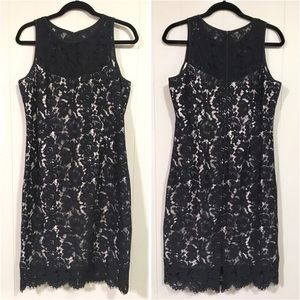 NWOT White House Black Market black lace dress